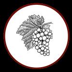 uva-icona